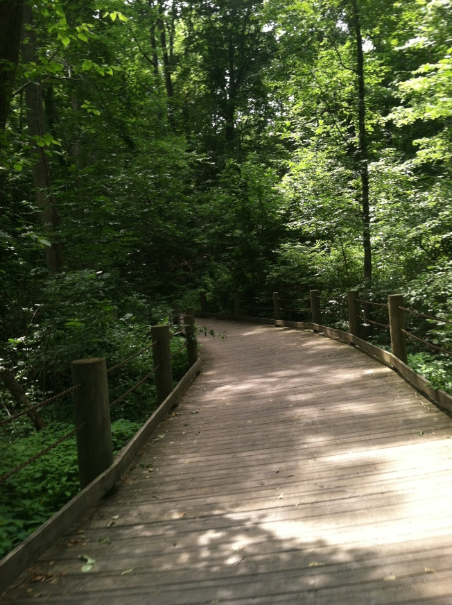 The Bridges of Mount Vernon Trail in Alexandria, VA